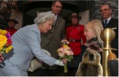 banff squirrel with Queen Elizabeth